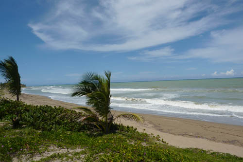 cabarete beachfront property 14