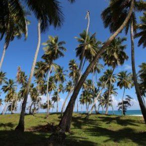 Grundstück direkt am Strand